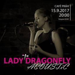 Profilový obrázek Lady DragonFly acoustic