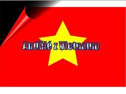 Profilový obrázek Andělé z Vietnamu