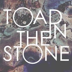 Profilový obrázek Toad in the Stone