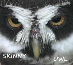 Profilový obrázek Skinny Owl