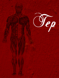 Profilový obrázek TEP