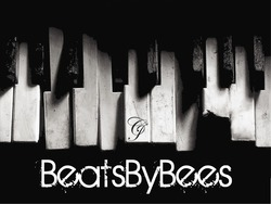 Profilový obrázek Beats By Bees