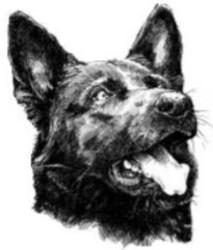 Profilový obrázek Dj Tomix