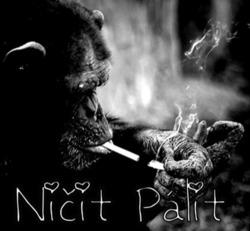 Profilový obrázek Ničit Pálit