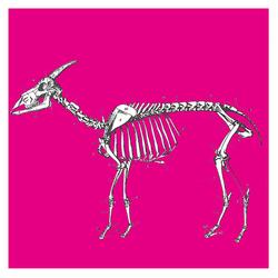 Profilový obrázek Kozy v háji