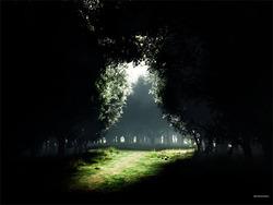 Profilový obrázek Inspiration of Darkness