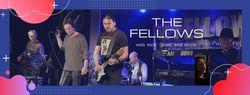 Profilový obrázek The FELLOWS, in Purple Time