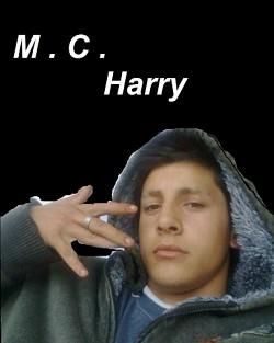Profilový obrázek 1mcharry1