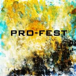 Profilový obrázek Pro-Fest