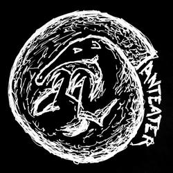 Profilový obrázek Anteater