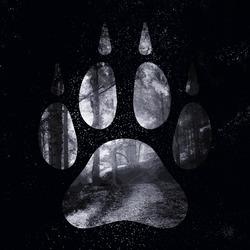 Profilový obrázek Wolftrail