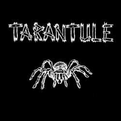 Profilový obrázek Tarantule
