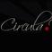 Profilový obrázek Circula Viva