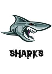 Profilový obrázek Sharks