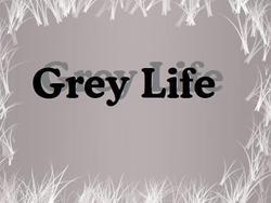 Profilový obrázek Grey Life
