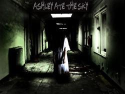 Profilový obrázek Ashley Ate The Sky