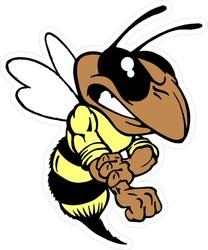 Profilový obrázek Hornets
