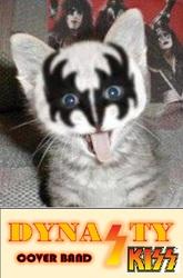 Profilový obrázek Dynasty