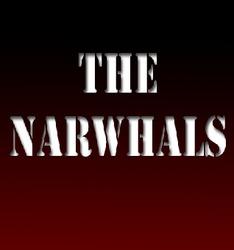 Profilový obrázek The Narwhals
