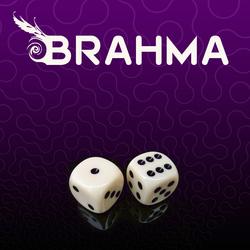 Profilový obrázek Brahma