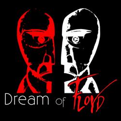 Profilový obrázek Dream of Floyd