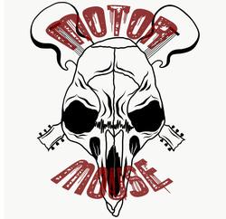 Profilový obrázek Motor Mouse