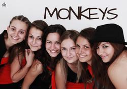 Profilový obrázek Monkeys