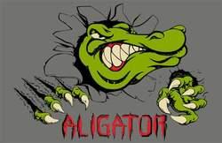 Profilový obrázek Aligator