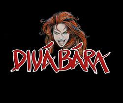 Profilový obrázek DIVÁ BÁRA