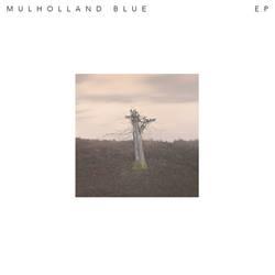 Profilový obrázek Mulholland Blue
