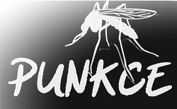Profilový obrázek Punkce