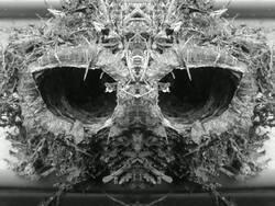 Profilový obrázek Potash