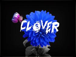Profilový obrázek Clover