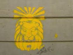 Profilový obrázek Find the Lion
