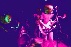 Profilový obrázek The Tin Turtles