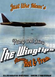 Profilový obrázek The Wingtips