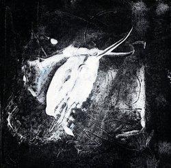 Profilový obrázek Exp-AJ