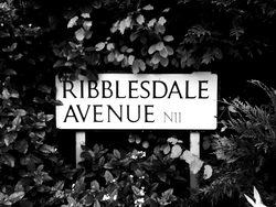 Profilový obrázek Ribblesdale