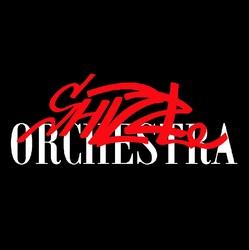 Profilový obrázek Shizzle Orchestra