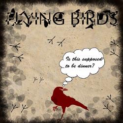 Profilový obrázek Flying Birds