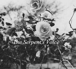 Profilový obrázek The Serpent's Voice
