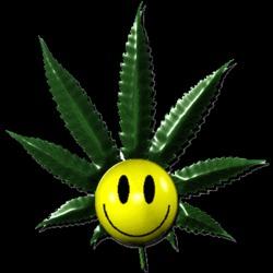 Profilový obrázek CannabisSmile