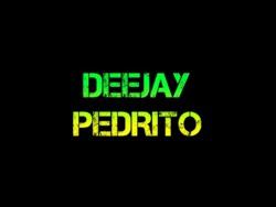 Profilový obrázek DJ Pedrito
