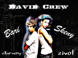 Profilový obrázek David Crew
