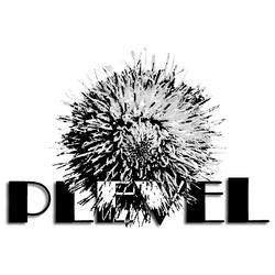 Profilový obrázek The Plevel