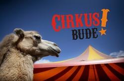 Profilový obrázek Cirkus bude!
