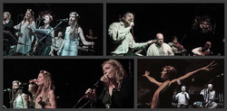 Profilový obrázek Musica Balkanika