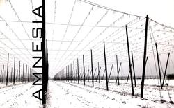 Profilový obrázek Amnesia