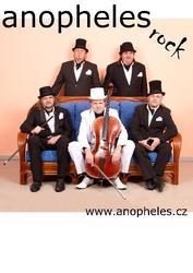 Profilový obrázek Anopheles