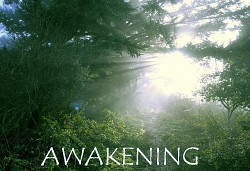 Profilový obrázek Awakening